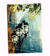 Sur Le Parvis De Notre-Dame. - Notre Dame De Paris