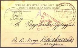 SERBIA - HUNGARY - SERB SOC. RED CROSS - POW TEAM - Officers DEPARTMENT   - 1915 - DAR - WW1