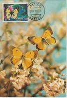 Grèce Carte Maximum 1981 Papillons 1439 - Cartes-maximum (CM)