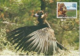Grèce Carte Maximum 2001 Oiseaux Vautour 2065 - Maximumkaarten