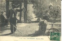 - 65 -  LES PYRENEES - Montreur D'Ours - Francia