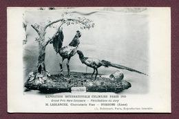"""SOISSONS  (02) : """" CHARCUTERIE M. LABLANCHE - Exposition Paris 1910 """" - Soissons"""