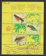 Indonesie Blok Sheet 1025 (B43) Used ; Vogels, Oiseau, Ave, Birds, Papegaai, Parit NOW MANY STAMPS INDONESIA VERY CHEAP - Papegaaien, Parkieten