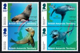 British Antarctic Territory BAT 2018 Migratory Species Featuring Seals 4v MNH - British Antarctic Territory  (BAT)
