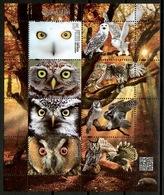 Poland 2017 Polonia / Birds Owls MNH Vögel Aves Oiseaux / Cu13111  41 - Pájaros