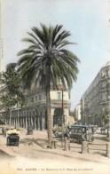 Algérie - Alger - Le Palmier Et La Rue De La Liberté - Tram - Algiers