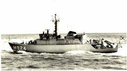 PRIMULA +- 15 * 9 CM BARCO BOAT Voilier - Barcos