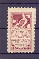 CINDERELLA ERINNOFILIA PROPAGANDA ITALIANA JUVENTUS  FIORENZE    (GIUGN1900B56) - Erinnofilia