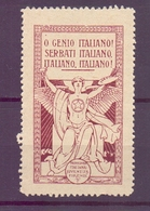 CINDERELLA ERINNOFILIA PROPAGANDA ITALIANA JUVENTUS FIRENZE (GIUGN1900B61) - Erinnofilia