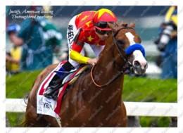 Ukraine   Postcard   Justify   Leading Thoroughbred Racehorse   Horse - Cavalli