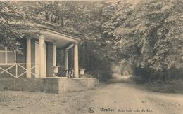 CPA - Belgique - Virelles - Sous Bois Près Du Lac - België