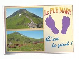 15 - Carte à Trou, LE  PUY  MARY   (pied) - Frankreich