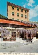 """12375-HOTEL PENSIONE """"LILLO""""-S.ILARIO(GENOVA)-FG - Alberghi & Ristoranti"""