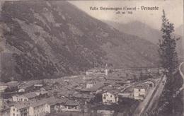 VALLE VERMENOGNA VERNANTE VG AUTENTICA 100% - Cuneo