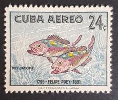 1958 Airmail, The Poey Commemoration, Fish, Cuba, *,**,or Used - Kuba