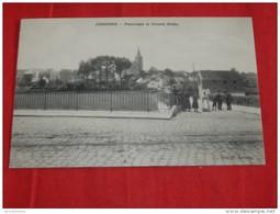 JODOIGNE  -  Panorama Et Grande Nèthe - Jodoigne