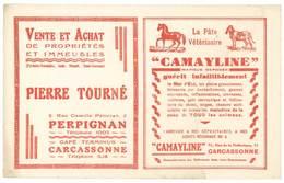 Buvard Pâte Vétérinaire Camayline, Pierre Tourné , Perpignan / Carcassonne - Animaux
