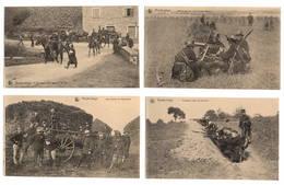 MILITARIA - Armée Belge, Lot De 23 Cartes - Militaria