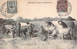 Vietnam - Attelages De Boeufs Cochinchinois (indochine) (cad Nouvelle Calédonie) - Vietnam