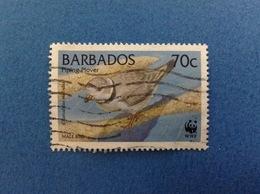 BARBADOS FRANCOBOLLO USATO STAMP USED WWF BIRD UCCELLO PIPING PLOVER 70 C - Barbados (1966-...)
