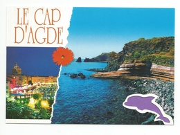 34  - Carte à Trou,   CAP D'AGDE    (dauphin) - Agde