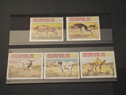 HAUTE VOLTA - 1972 ANIMALI 5 VALORI - NUOVI(++) - Alto Volta (1958-1984)
