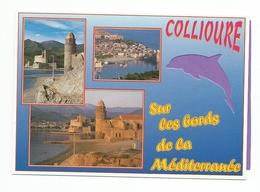66  - Carte à Trou,  COLLIOURE   (dauphin) - Collioure