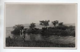 """ETHIOPIE - CARTE PHOTO """"SUR LES RIVES DU FLEUVE AOUACHE"""" - Ethiopie"""