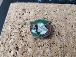 1 PINS PMU  SILGEOIRE EN VALDAINE - Pin's & Anstecknadeln