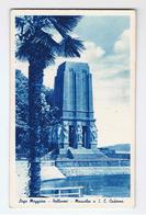PALLANZA (NO):   LAGO  MAGGIORE  -  MAUSOLEO  A  S. E. CADORNA  -  FP - Monumenti Ai Caduti