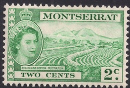 Montserrat 1953 QE2 2ct Green Sea Island Cotton MM SG 138 ( M1478 ) - Montserrat