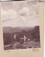PLAMA MAJORQUE Route De Pollensa 1930 Photo Amateur Format Environ 7,5 Cm X 5,5 Cm - Lieux