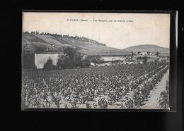 C.P.A. DU CRU DU MOULENT A VENT LES MORIERS A FLEURIE 69 - France
