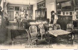 D21  Château De LANTENAY  Le Salon      ( Plombières Les Dijon ) - France