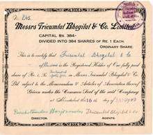 Titre  Ancien - Messrs Tricumtal Bhogital & Co. Limited - Titre De 1929 - Industrie