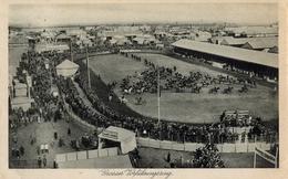 1931 , ALEMANIA - HANNOVER , TARJETA POSTAL CIRCULADA , HÍPICA , CABALLOS , ESTADIO , STADION , STADIUM , HORSES - Caballos