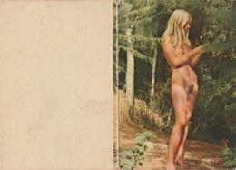 Kalender / Calendrier ... Coquin ...nu -1979 ( 12 ) - Calendriers