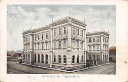 """M08183 """"MINISTERE DE L'AGRICOLTURE-RIO""""   CART. POST. ORIG. NON SPEDITA - Rio De Janeiro"""