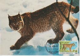 Grèce Carte Maximum 1990 Lynx 1725 - Tarjetas – Máximo