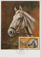 Niger Carte Maximum 1973 Chevaux 285 - Niger (1960-...)