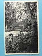 Florennes Le Château Escalier Des Charmilles - Florennes