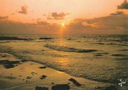 Sur Une Mer Calme Le Soleil Déverse Ses Rayons D'Or (2 Scans) - Halt Gegen Das Licht/Durchscheink.
