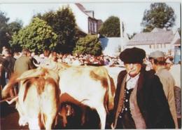 CPM 48 NASBINALS ... Foire Du 17 Août 1992 (Livenais) Bestiaux - Francia