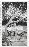 PHOTO - AVIGNON -  Jeune Couple Dans Les Branches -  Ft 11 X 7 Cm - Lieux