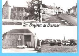 Un Bonjour De Biesmes-Mettet-+/-1960-Multivues-Ferme Féodale-Place Du Mont-Salle Des Fêtes-Vue Village-Eglise St.Martin - Mettet