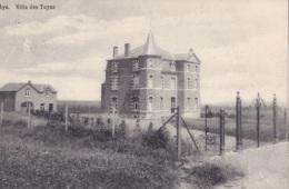 Aye Villa Des Tuyas Circulée En 1913 - Marche-en-Famenne