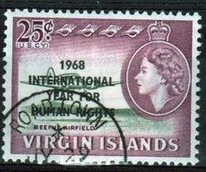 British Virgin Islands 1968 Queen Elizabeth Single 25 Cent Overprint Stamp From The Human Rights Set. - British Virgin Islands