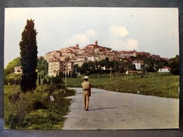 (FG.O53) CASALE MARITTIMO - PANORAMA Animata (PISA) NV - Pisa