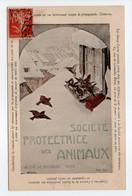 - CPA PARIS (75) - Société Protectrice Des Animaux - 84, Rue De Grenelle - Photo Neurdein - - Autres