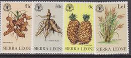 Sierra Leone Flowers FAO Set MNH - Organizzazioni